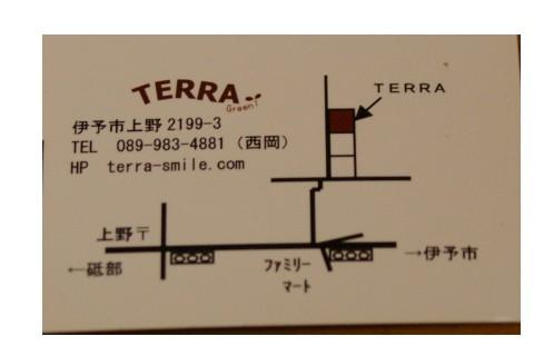 101207terra1